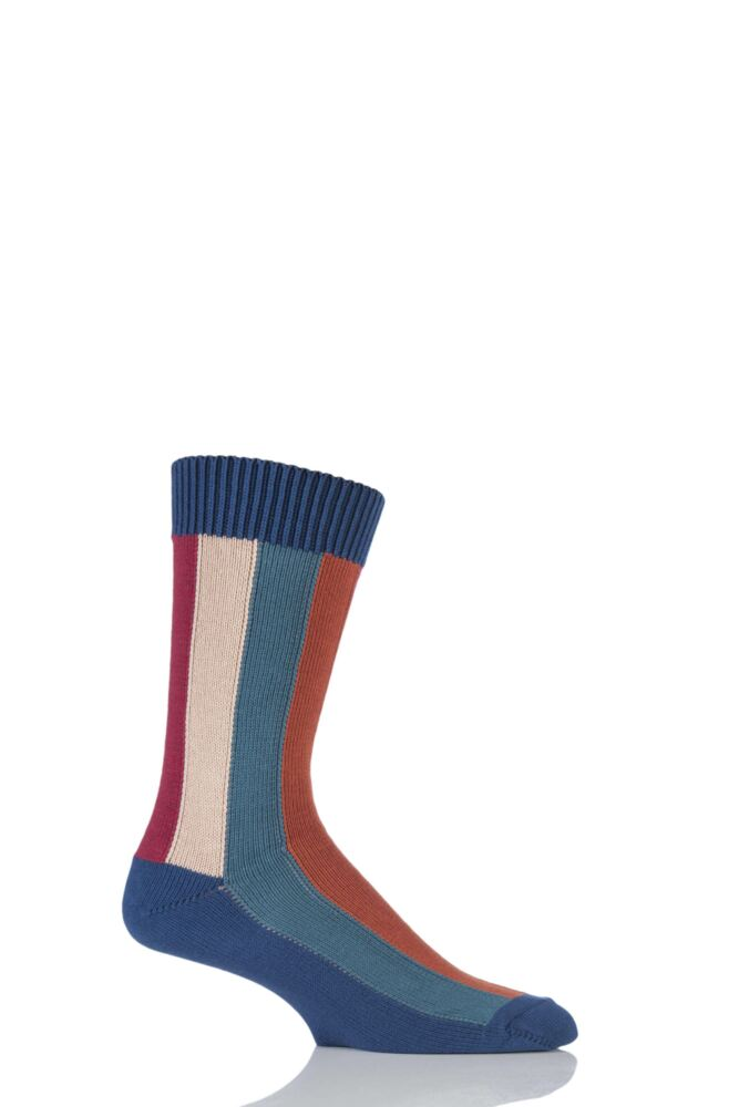 Mens 1 Pair HJ Hall Rainbow Vertical Striped Socks