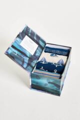Mens 4 Pair Thought Seaward Bamboo and Organic Cotton Socks in Gift Box Leading Image