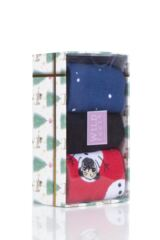 Ladies 3 Pair SOCKSHOP Wild Feet Christmas Box Gift Boxed Novelty Cotton Socks Packaging Image
