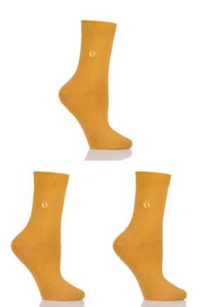 Ladies 3 Pair SockShop Colour Burst Cotton Socks with Smooth Toe Seams