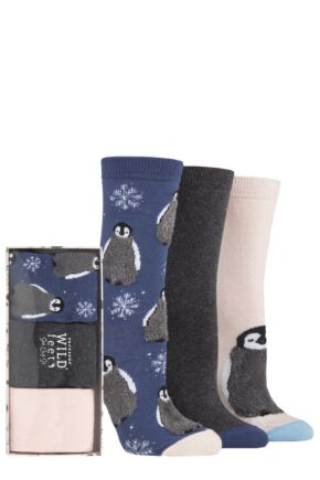 Ladies 3 Pair SOCKSHOP Wild Feet Gift Box