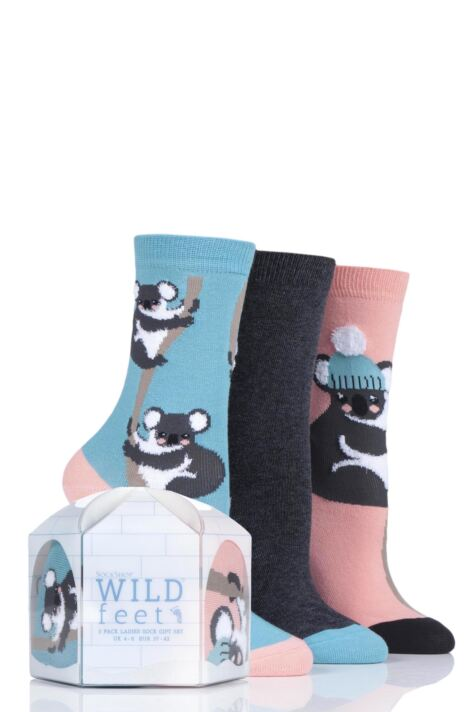Ladies 3 Pair SockShop Wild Feet Gift Boxed Koala Cotton Socks Product Image