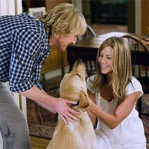 Bailey the dog mimics his sock-loving movie counterpart