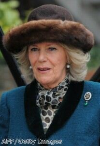 Camilla dons fur hat for Cheltenham races
