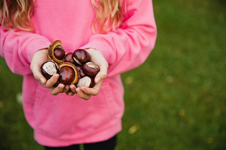 5 awesome autumn-themed activities for the kids