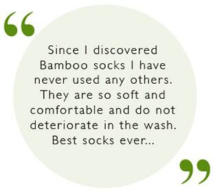 bamboo_review_11.jpg