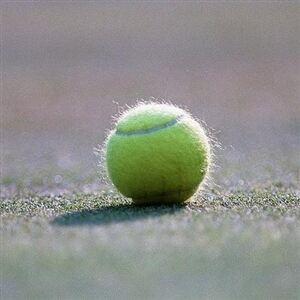Knee-high sports socks causing a stir in the tennis world